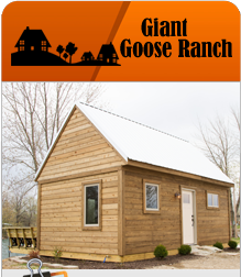 Giant Goose Ranch